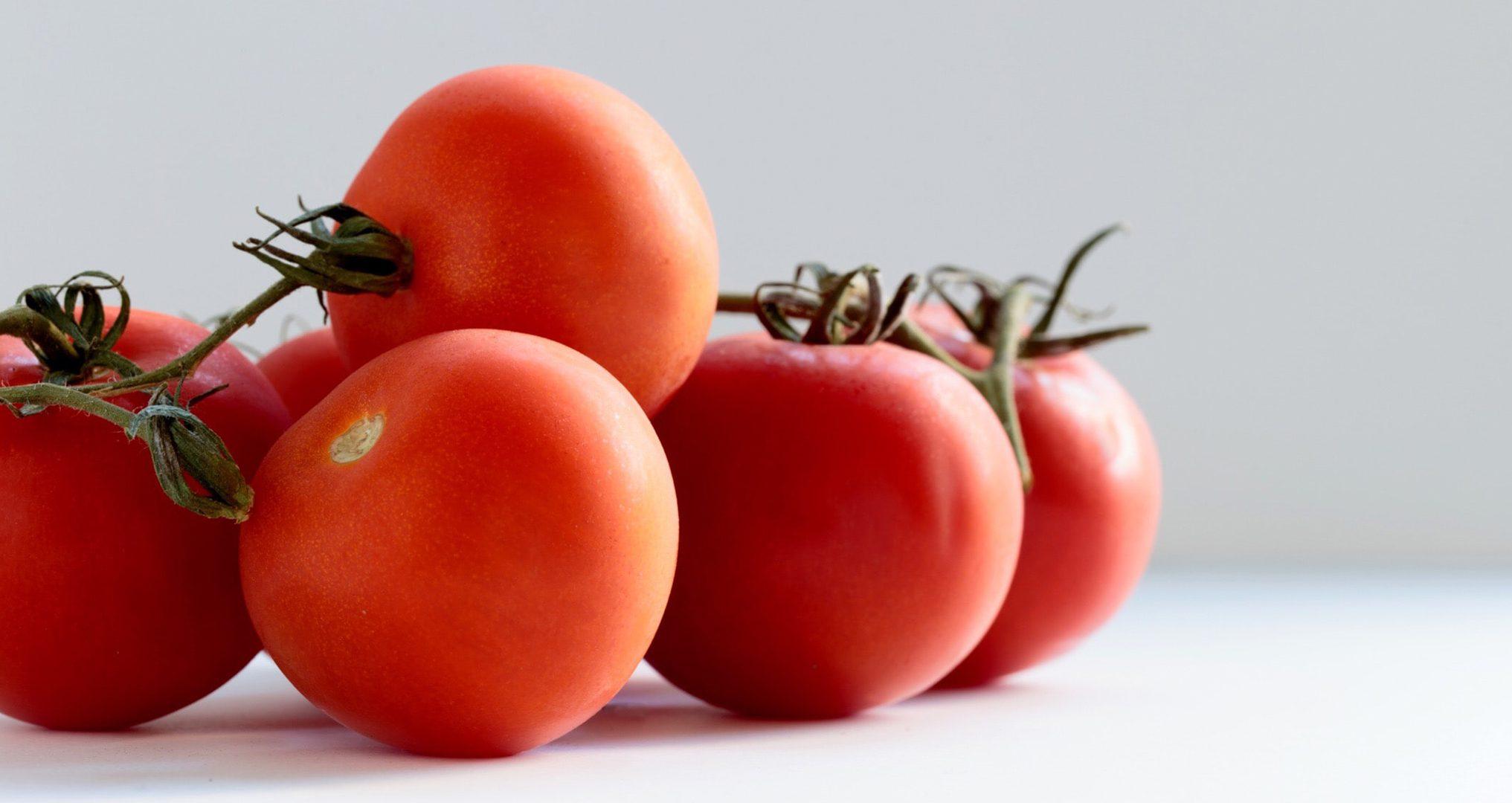 fresh Ray & Mascari tomatoes on white kitchen table